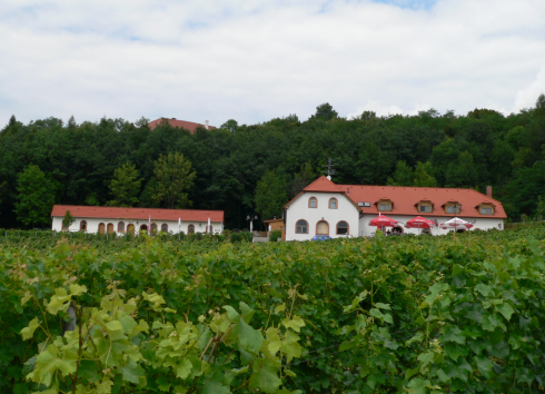 SÁDEK WINE NATURE TRAIL