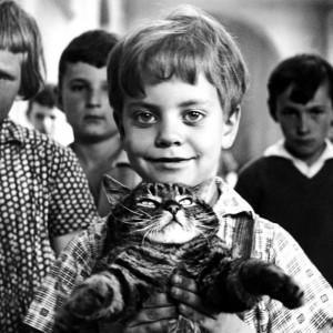 Fotografie z filmu Až přijde kocour